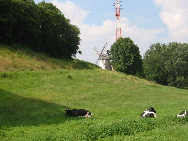Mühle bei Minden Mühlenroute Günter Lampe Mühle bei Minden Mühlenroute Günter Lampe