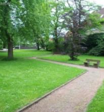 Blick in den Stadtpark von Dassel