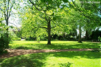 Ansicht vom Luisenpark in Dassel