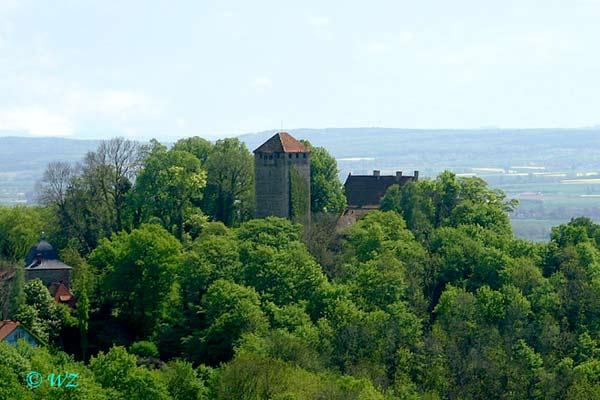 Die Burg Schaumburg
