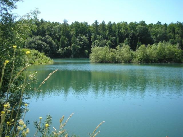 Blick auf den See vom neuen Fahrradweg Polle-Reileifzen