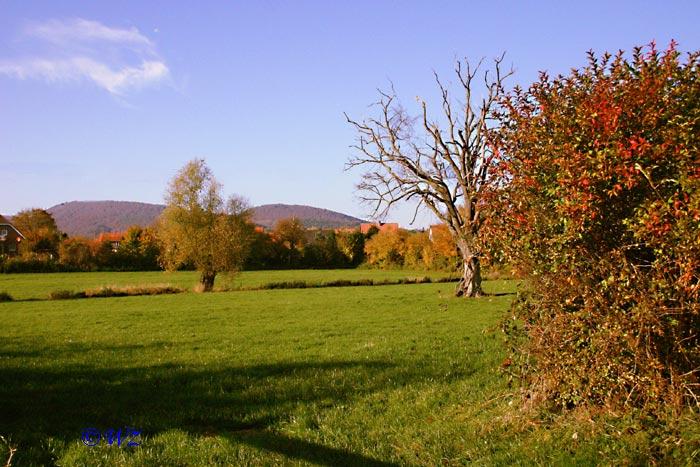 Rinteln Naturschutzgebiet Aher Kämpe